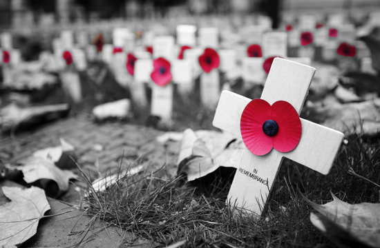 Remembrance day display in Westminster Abbey