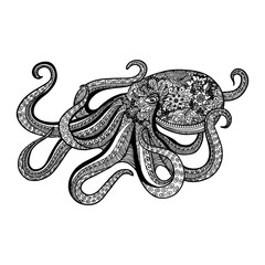 zentangle style octopus hand drawn illustration of sea animal beautiful doodles design vector