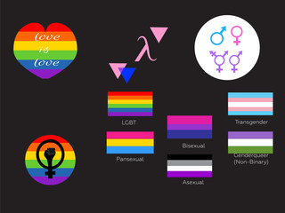 LGBT symbols and flags. Types of gender. vector