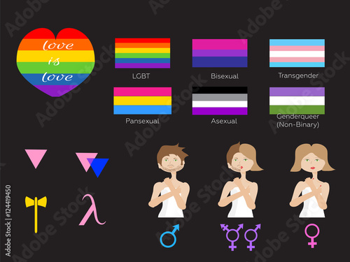 lgbt symbols and flags types of gender vector stock image and