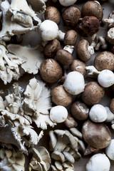 Various mushrooms