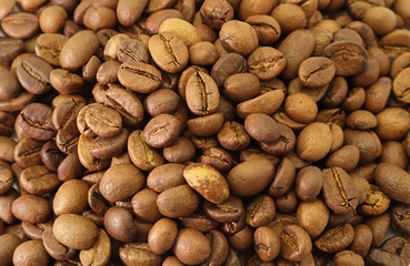 Coffee Beans Texture Background  brown