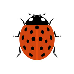 Ladybug small icon. Red lady bug sign, isolated on white background. Wildlife animal design. Cute colorful ladybird. Insect cartoon beetle. Symbol of nature, spring, summer. Vector illustration