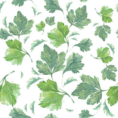 100% natural illustration. Watercolour art work with parsley.