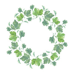 WATERCOLOR PARSLEY WREATH.