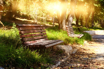 Old lonely bench in the quiet park at sunset light
