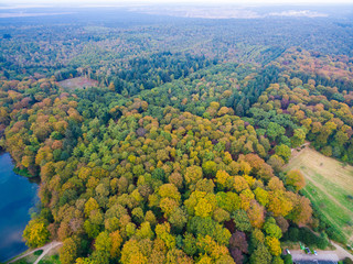 Aerial forest and fields view in Netherlands at autumn season