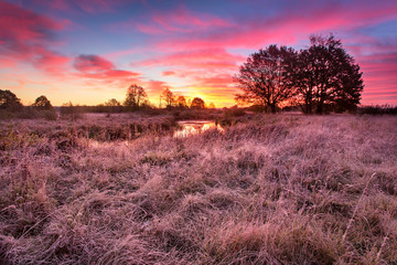 Colorful autumn dawn. Little river in the meadow