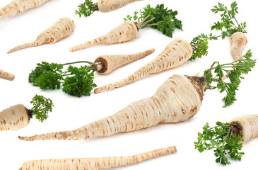 Parsley vegetable root on white