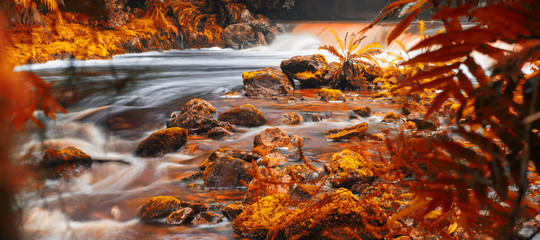 Newell creek in Tasmania, Australia is a magnificent fast running stream. Abstract landscape with red hues added.