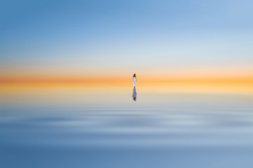 lonely women standing in the middle of a sea during dawn