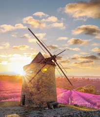 Garden Poster Mills Windmill with levander field against colorful sunset in Provence, France