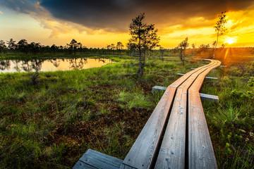 Sunset in Kemeri National Park