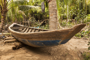 Old vietnamese wood boat in the tropical forest
