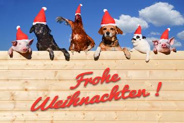 Wall Mural - Lustige Gruppe von Haustieren sitzt auf einer Bretterwand, Weihnachtsgruss