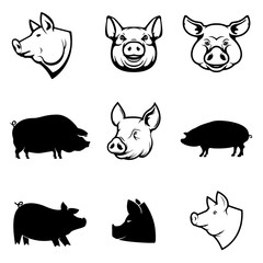 Set of Pork labels. Pig silhouettes and heads. Design elements f