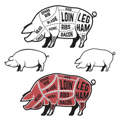 Butcher diagram, scheme and guide - Pork cuts.  Set of pig silho