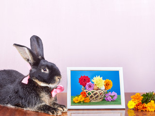 Beside pictures of flowers is a rabbit with a bow at the neck