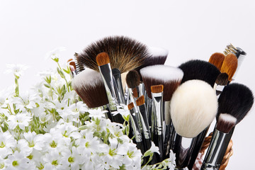 Makeup brushes set with flowers. Chickweed. White background