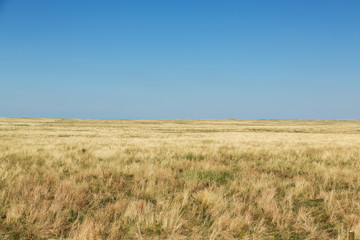 The plains of South Dakota on a summer day.  Wall mural