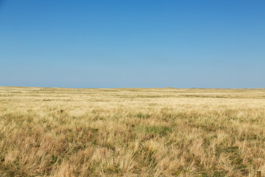 The plains of South Dakota on a summer day.