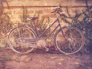 old vintage bicycle parking at grunge wall house with retro filt