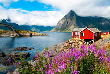 Printed roller blinds Scandinavia Lofoten islands landscape with tipical red houses, Norway