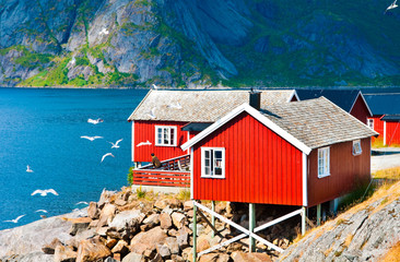 Garden Poster Scandinavia Tipical red houses on Lofoten islands, Norway
