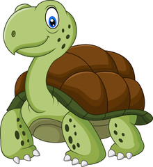Funny turtle cartoon
