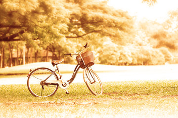 Bicycle in the public park in vacation holiday with retro