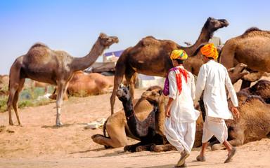 Men in ethnic attire attends the Pushkar fair in Rajasthan, Indi