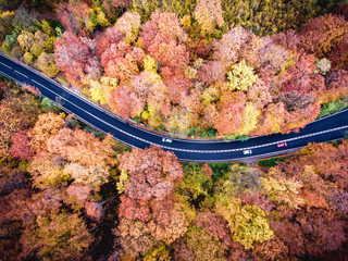 Road in the forest. Hi mountain pass in Transylvania. Aerial view from drone.