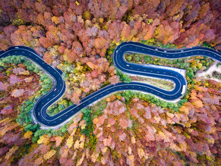 Foto op Plexiglas Luchtfoto Winding road trough the forest. Hi mountain pass in Transylvania, Romania