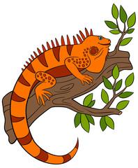 Cartoon animals. Cute orange iguana sits on the tree branch.