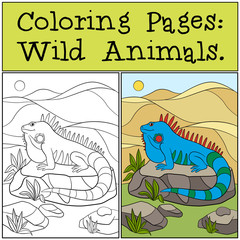 Coloring Pages: Wild Animals. Cute blue iguana.