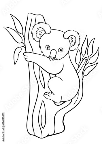 Cute Baby Koala Coloring Pages