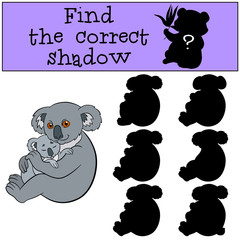 Educational game: Find the correct shadow. Mother koala with bab