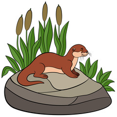 Cartoon animals. Little cute otter stands on the stone.