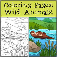 Coloring Pages: Wild Animals. Mother otter with her cute baby.