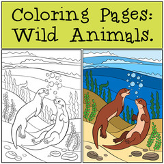 Coloring Pages: Wild Animals. Two little cute otters swim.