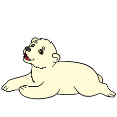 Cartoon animals. Little cute baby polar bear smiles.