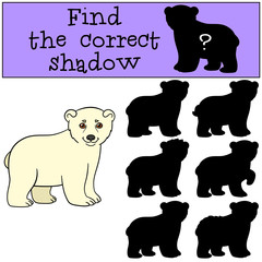 Educational game: Find the correct shadow. Cute baby polar bear.