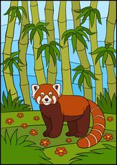 Cartoon wild animals. Little cute red panda smiles.