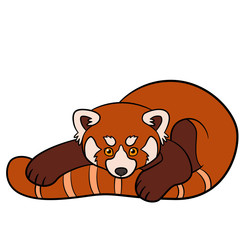 Cartoon wild animals. Little cute baby red panda.