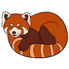 Cartoon wild animals. Little cute red panda.