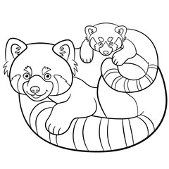 Coloring pages. Mother red panda with her baby.