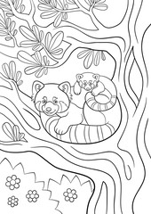 Coloring pages. Mother red panda with her cute baby.