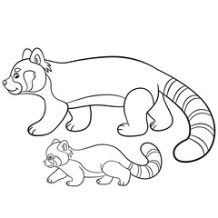 Coloring pages. Mother red panda walks with her baby.