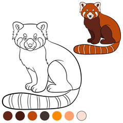 Coloring page: red panda. Little cute red panda smiles.