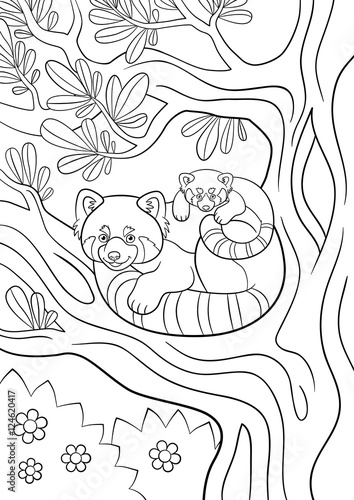 red panda cute coloring pages - photo#28